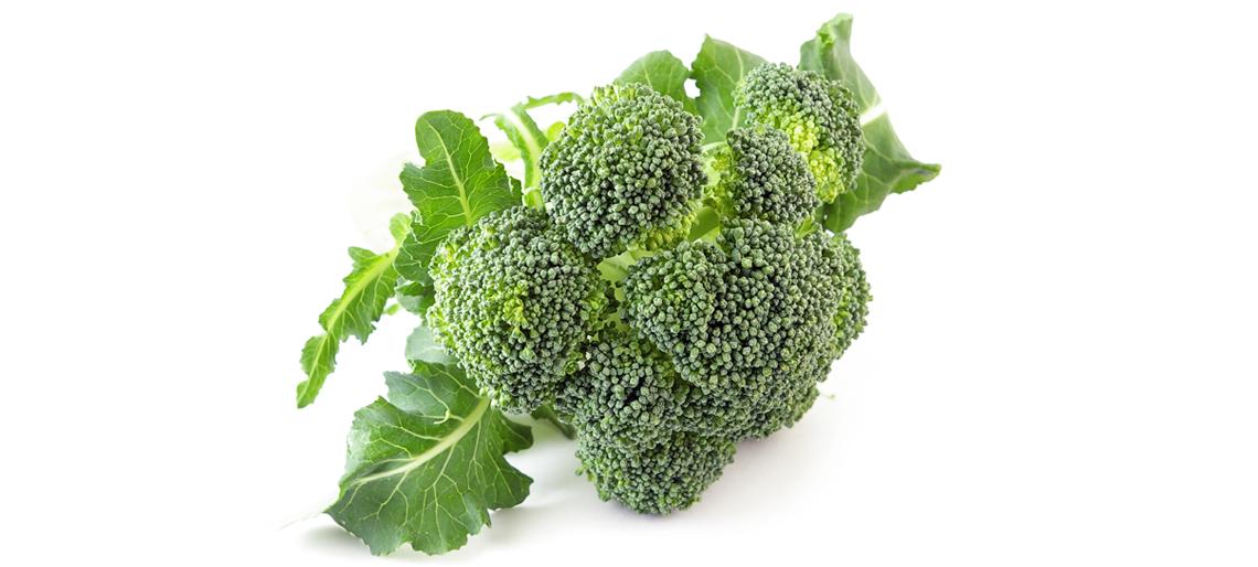 Sulforafano, un activo del brócoli con potenciales efectos