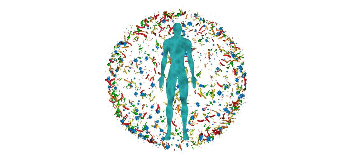 Relación entre la microbiota intestinal y el sistema inmunitario
