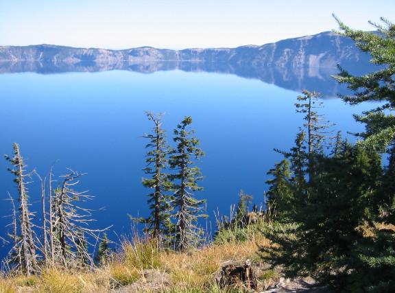 Algas verdes azules 100% Klamath – Procedimiento de recolección y preparado