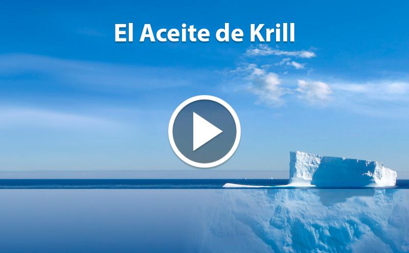 ¿Conoces el Aceite de Krill?