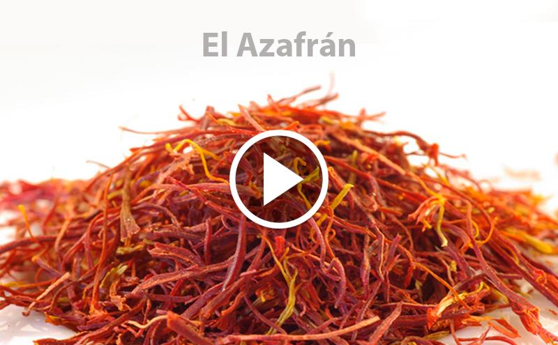 ¿Conoces el Azafrán?